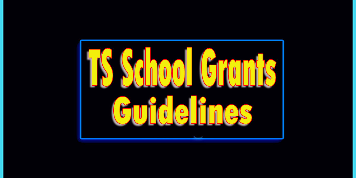 Grants Guidelines